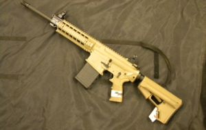 SIG Sauer 716 Rifle Full HD