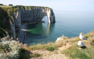 Sea Cliffs, Etretat Background