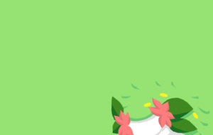 Shaymin Pictures