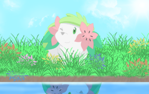 Shaymin Widescreen