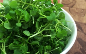 Watercress Pictures