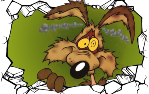 Wile E Coyote Images