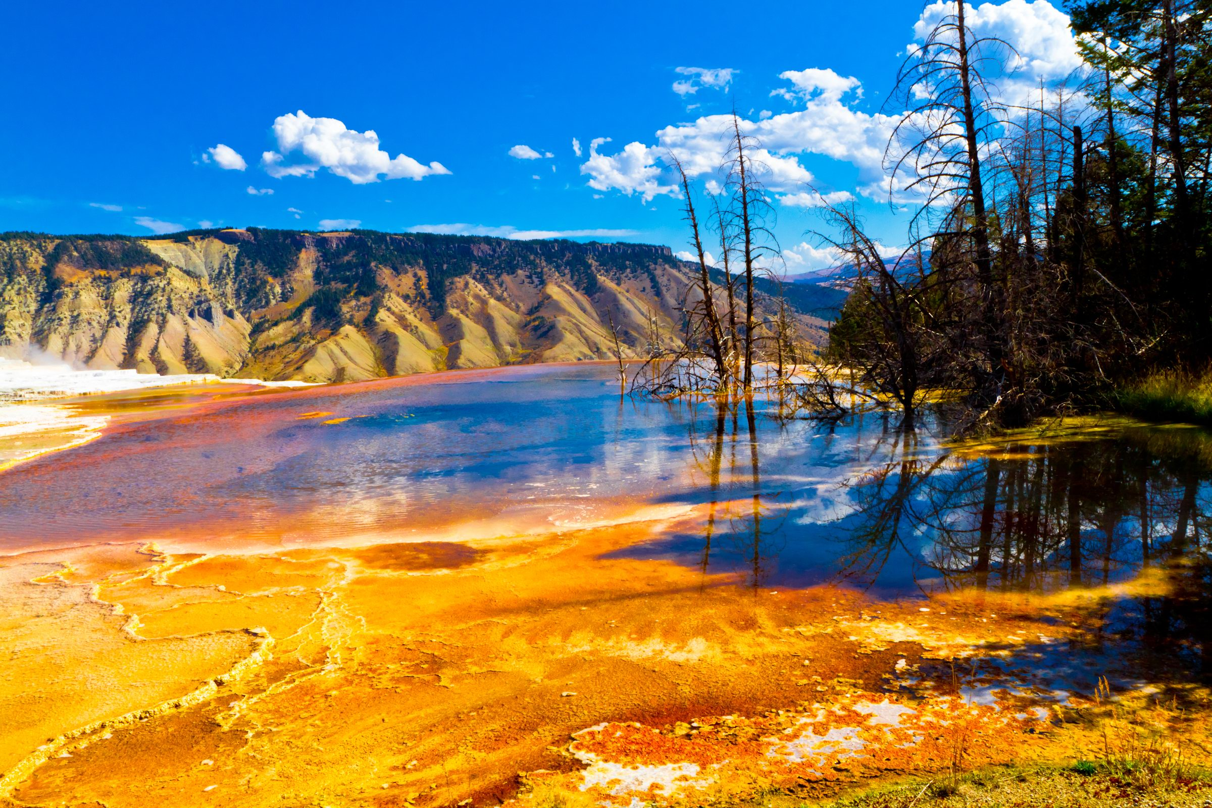 Yellowstone National Park HD Wallpapers