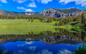 Yellowstone National Park Images