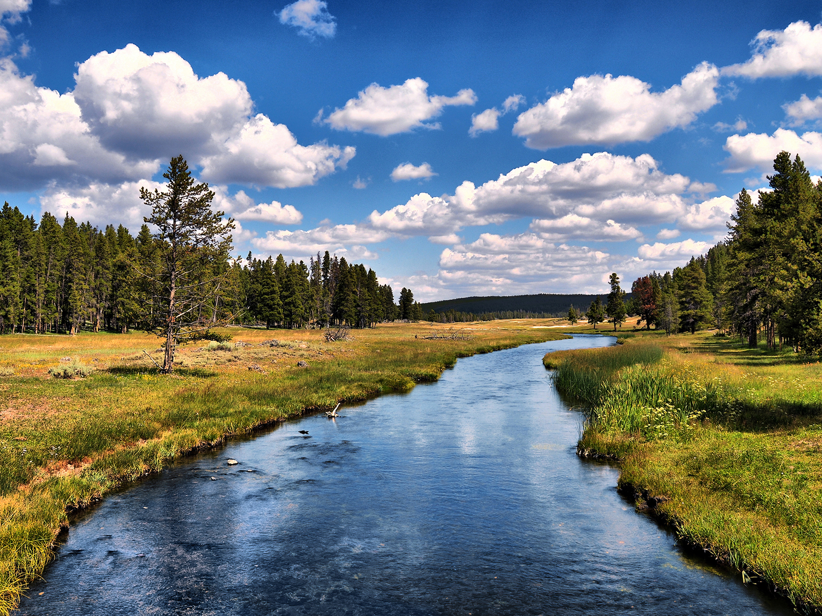 desktop yellowstone national park full hd