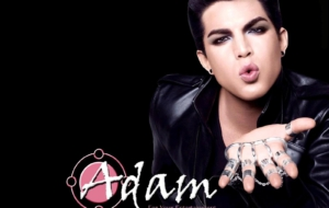 Adam Lambert High Definition Wallpapers
