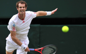 Andy Murray Full HD