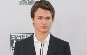Ansel Elgort HD Wallpaper