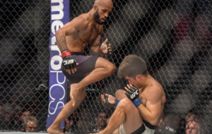 Demetrious Johnson Computer Wallpaper