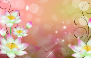 Flowers High Definition Wallpapers