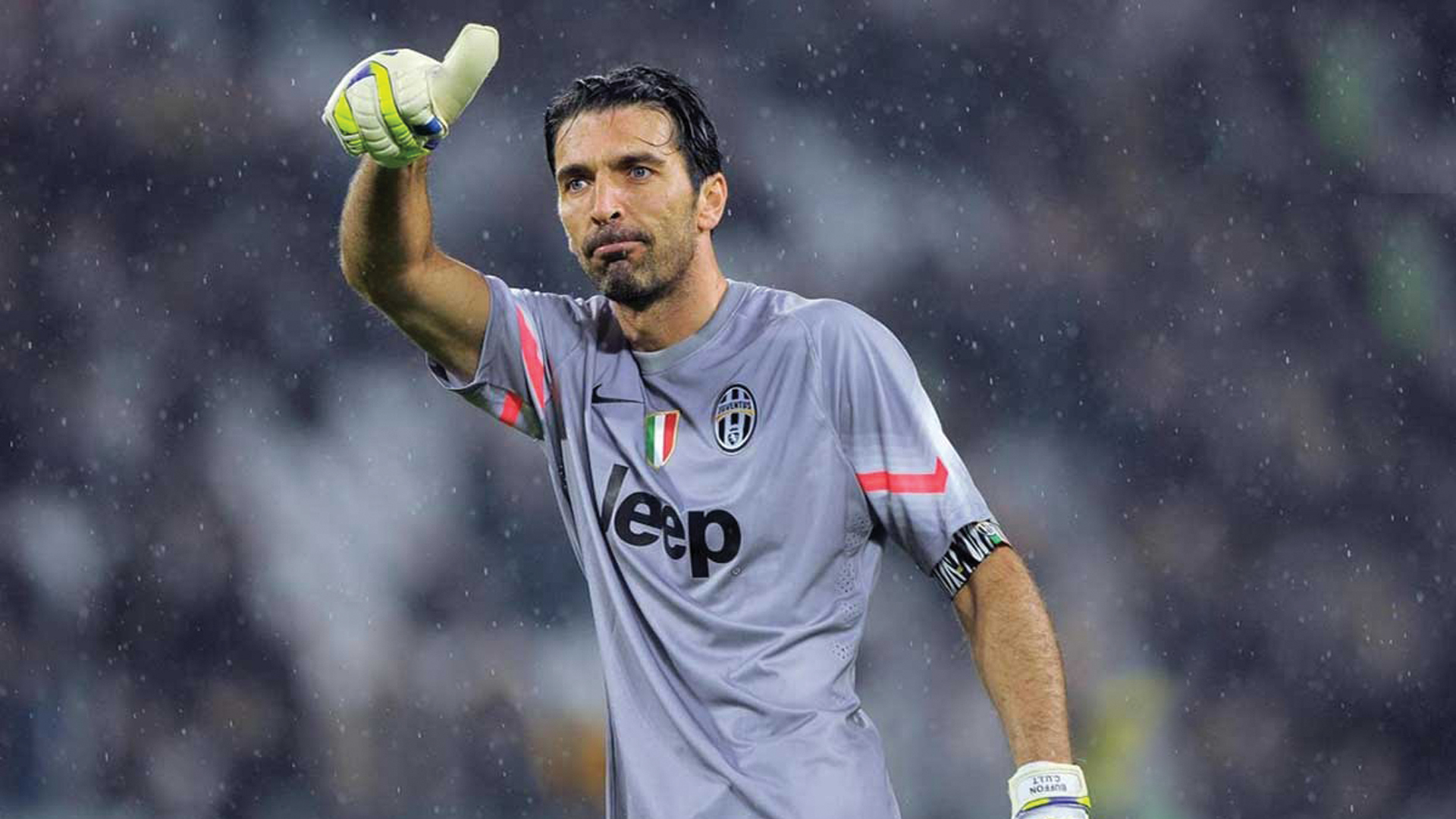 best wallpaper buffon - photo #1