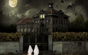 Halloween Backgrounds 19
