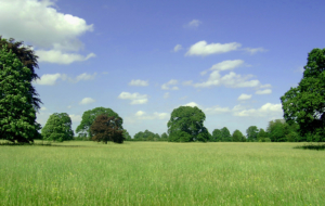Landscape Widescreen