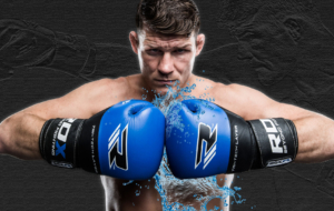Michael Bisping Wallpapers