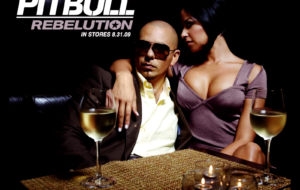 Pitbull Background