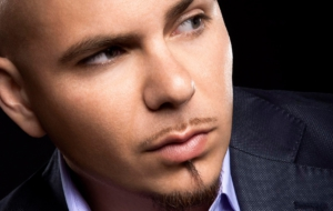 Pitbull High Definition