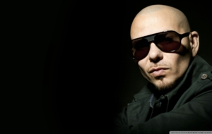 Pitbull Wallpapers HD