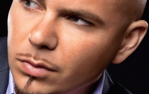 Pitbull Full HD
