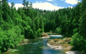 Rivers Pictures