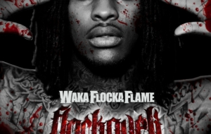 Waka Flocka Flame Widescreen