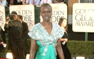 Alek Wek HD Wallpaper