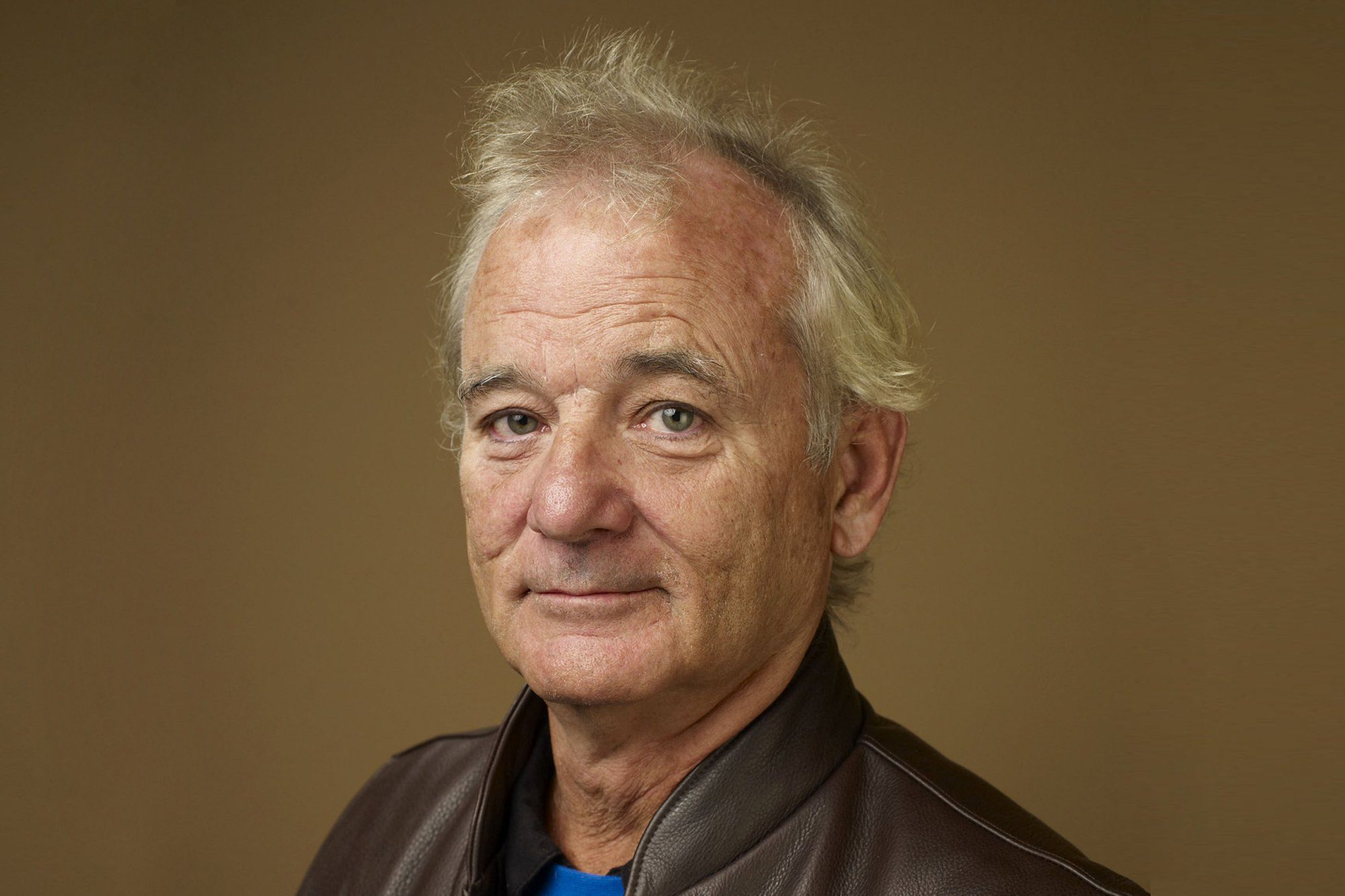 bill murray hd wallpaper - photo #14