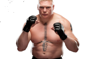 Brock Lesnar High Quality Wallpapers