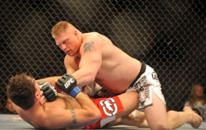 Brock Lesnar Widescreen
