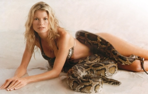 Marisa Miller HD Background