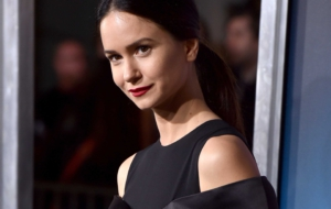 Katherine Waterston Widescreen