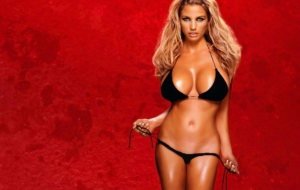 Katie Price HD Desktop