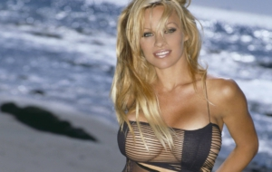 Pamela Anderson HD Background