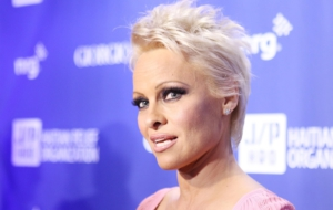 Pamela Anderson HD Wallpaper