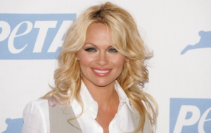 Pamela Anderson Wallpapers HD