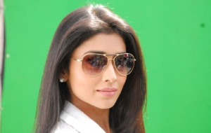 Shriya Saran Widescreen