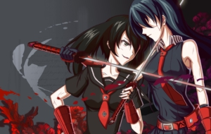 Akame Ga Kill! High Definition Wallpapers