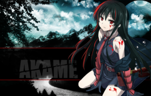 Akame Ga Kill! Wallpapers HD