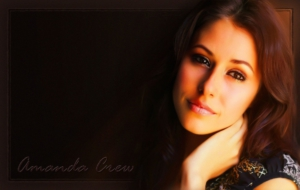 Amanda Crew High Quality Wallpapers