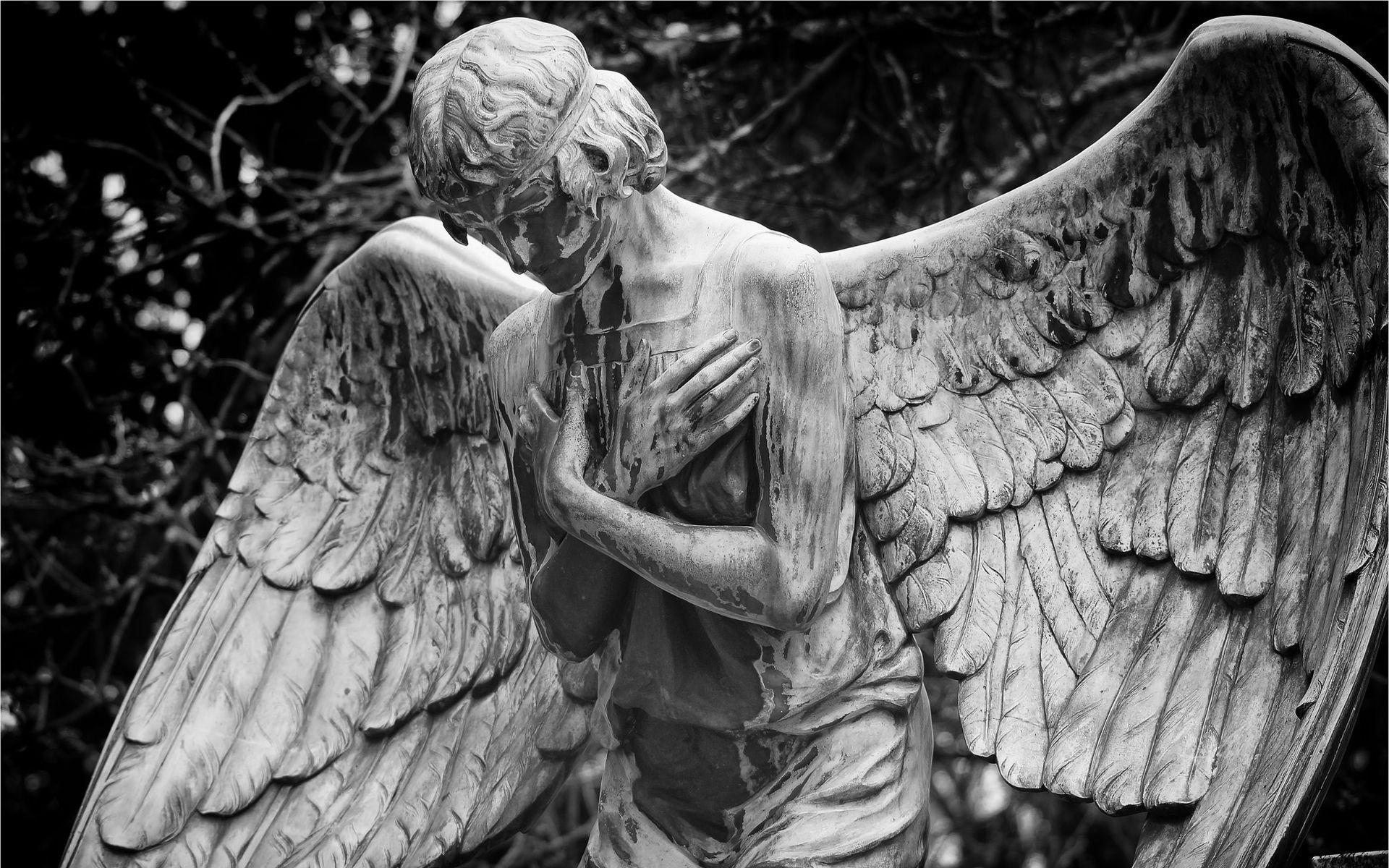 Angel Statue Wallpapers Backgrounds