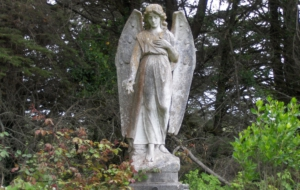 Angel Statue Photos