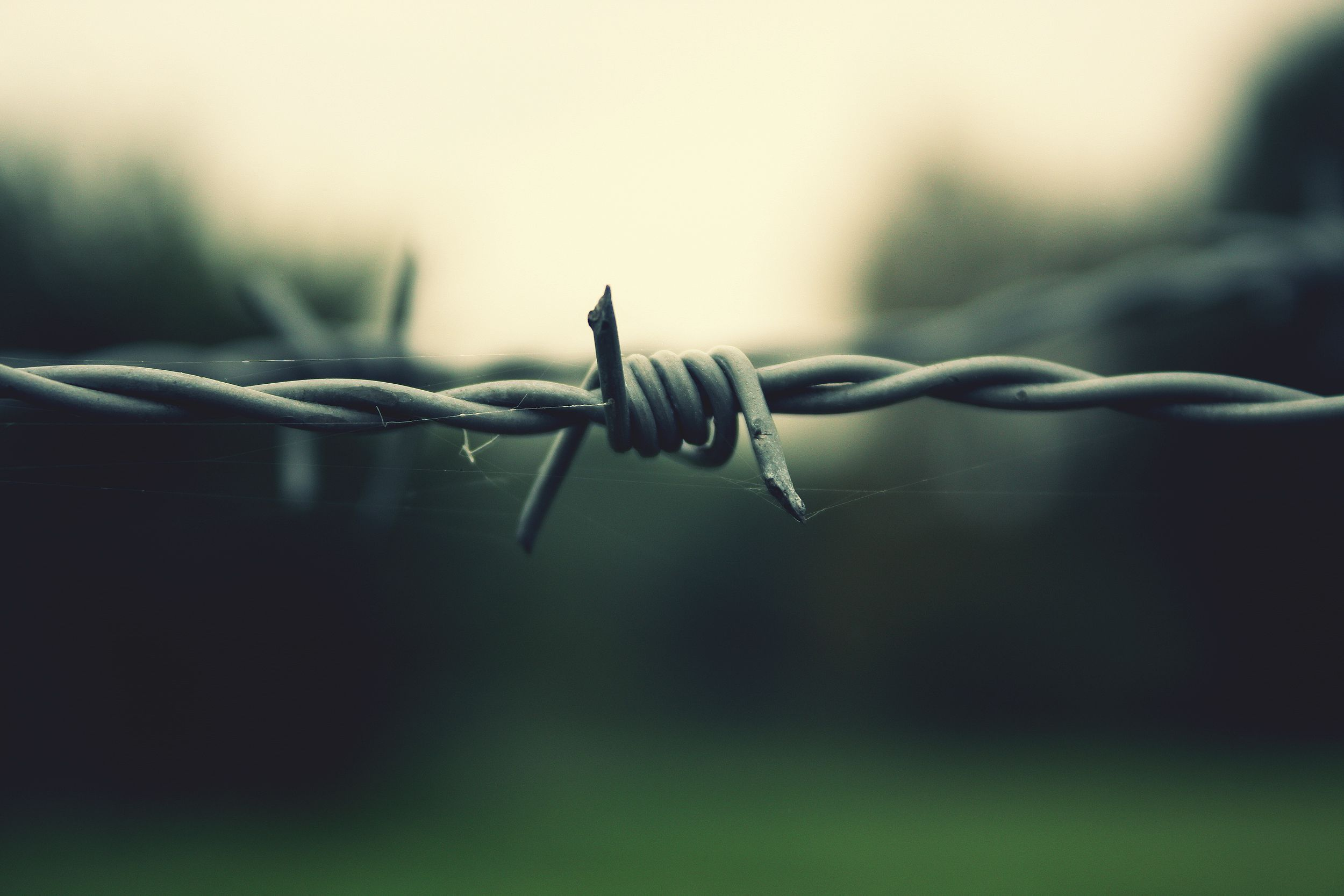 Barb Wire Wallpapers Backgrounds