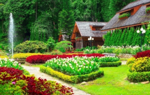 Best Images Of Garden