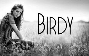 Birdy Computer Wallpaper