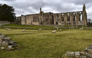 Bolton Priory Full HD