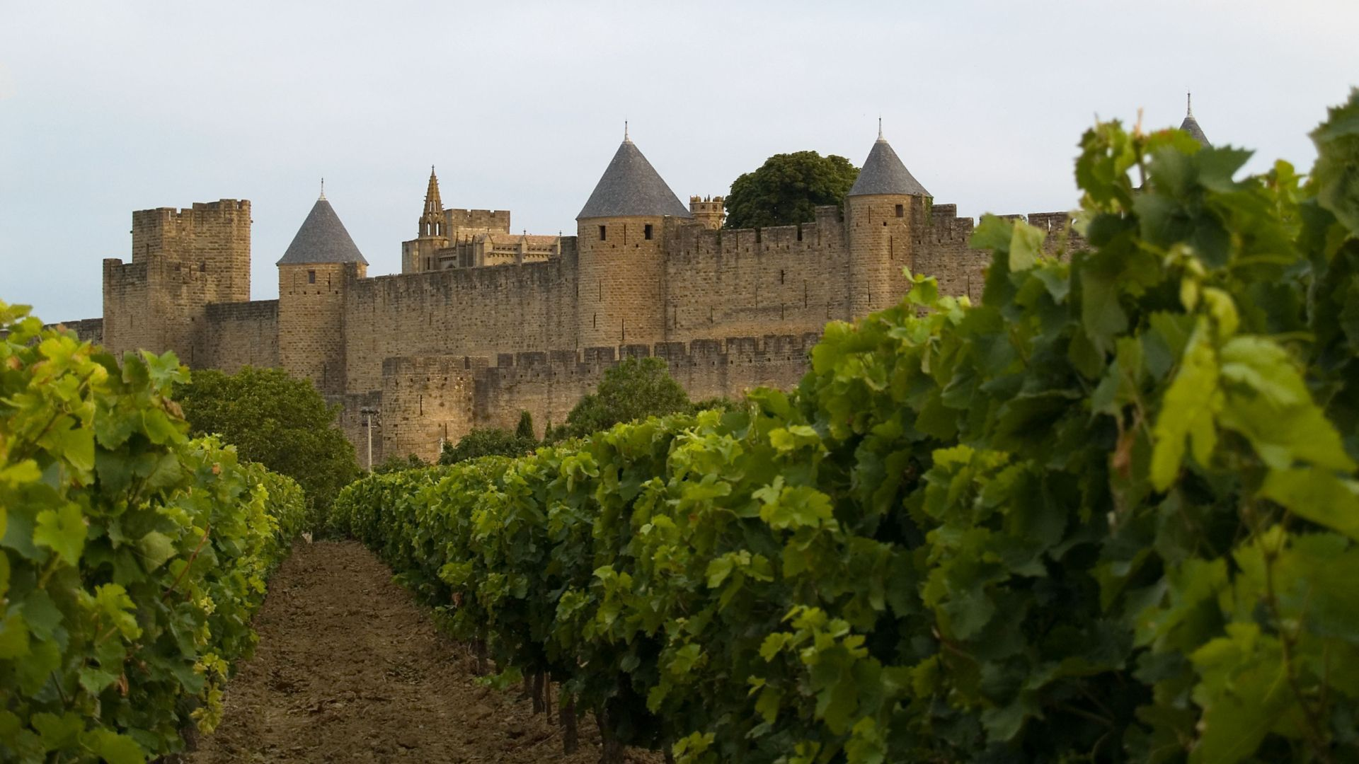 Carcassonne Download