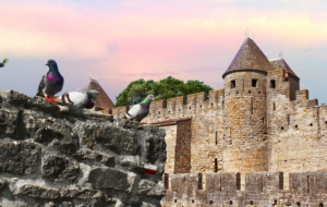 Carcassonne Images