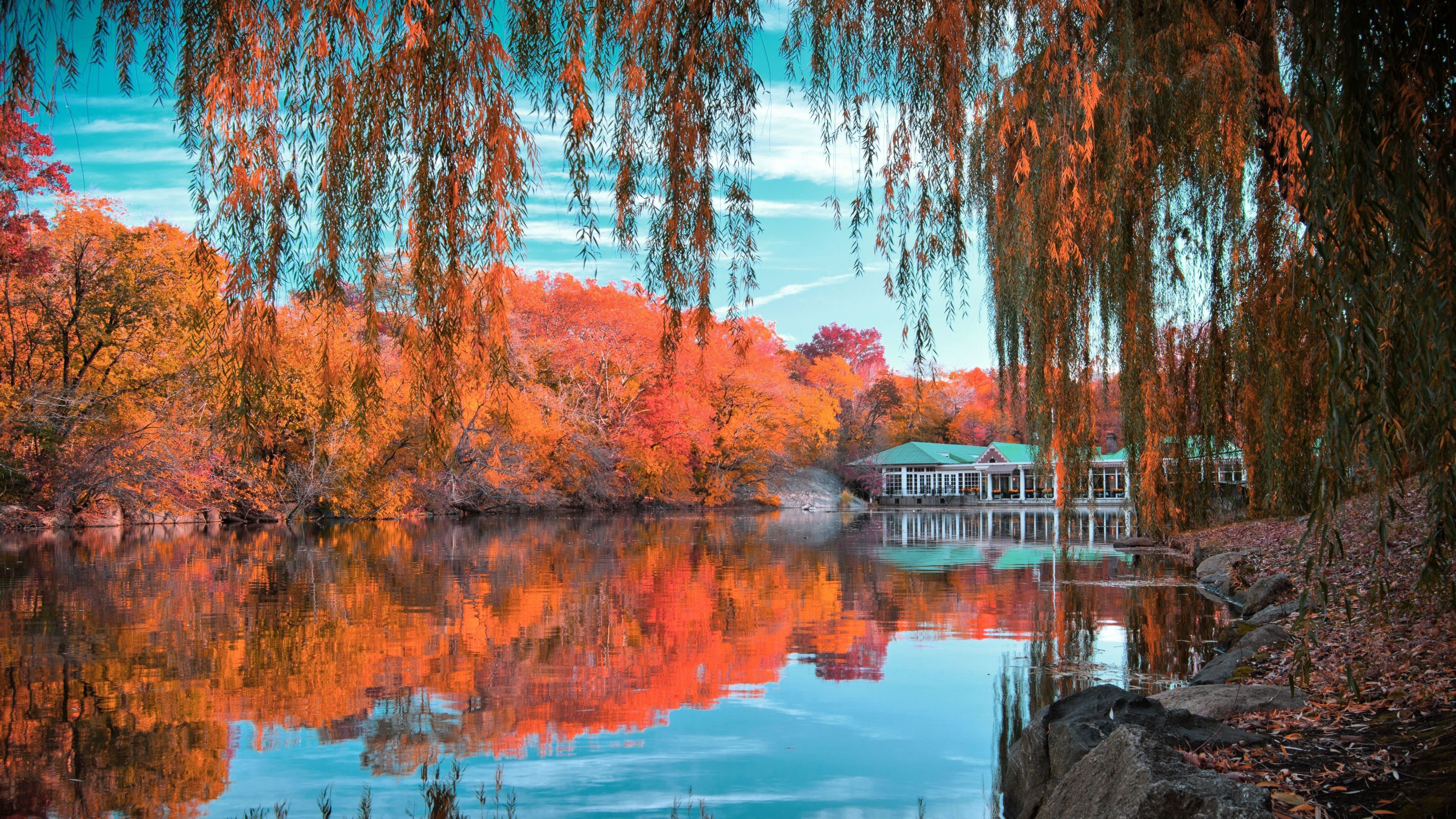 Central park wallpapers backgrounds for Immagini desktop new york