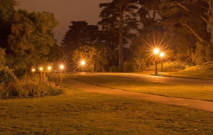Golden Gate Park 4K