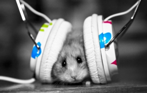Headphones HD Wallpaper