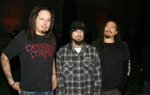 Korn Background
